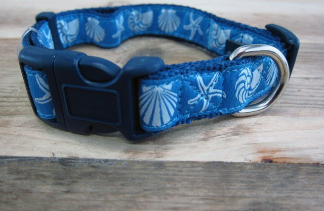 COASTRAL DOG COLLOR BLUE